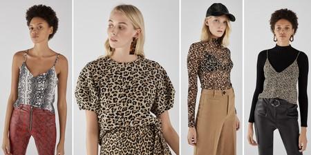 Camisetas Leopardo Bershka 02