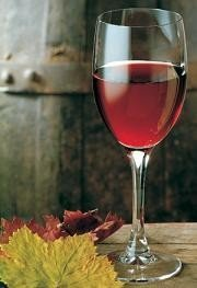 El Centro del Saber del Vino