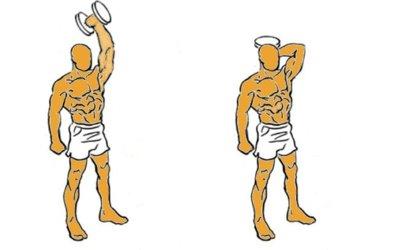 Guía para principiantes (IX): Extensiones verticales de brazos con mancuerna