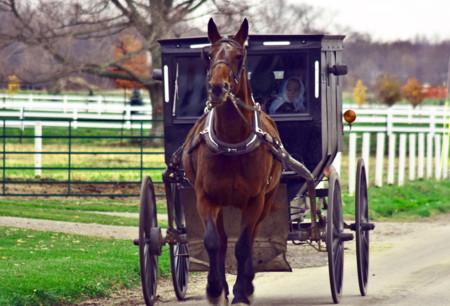 Conociendo la cultura Amish en Lancaster