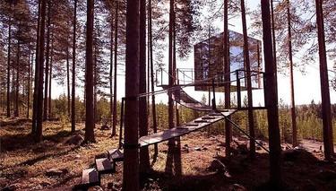 MirrorCube, vida minimalista en la copa de un árbol