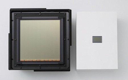 El sensor de la 5D Mark IV, con factor de recorte de 1/40X