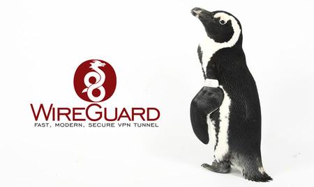 WireGuard, el VPN open source admirado por Linus Torvalds, será parte del kernel de Linux
