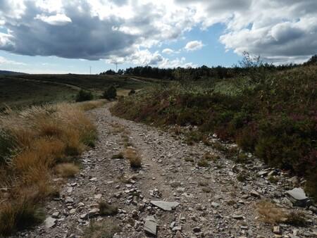 Camino De Santiago Baleira