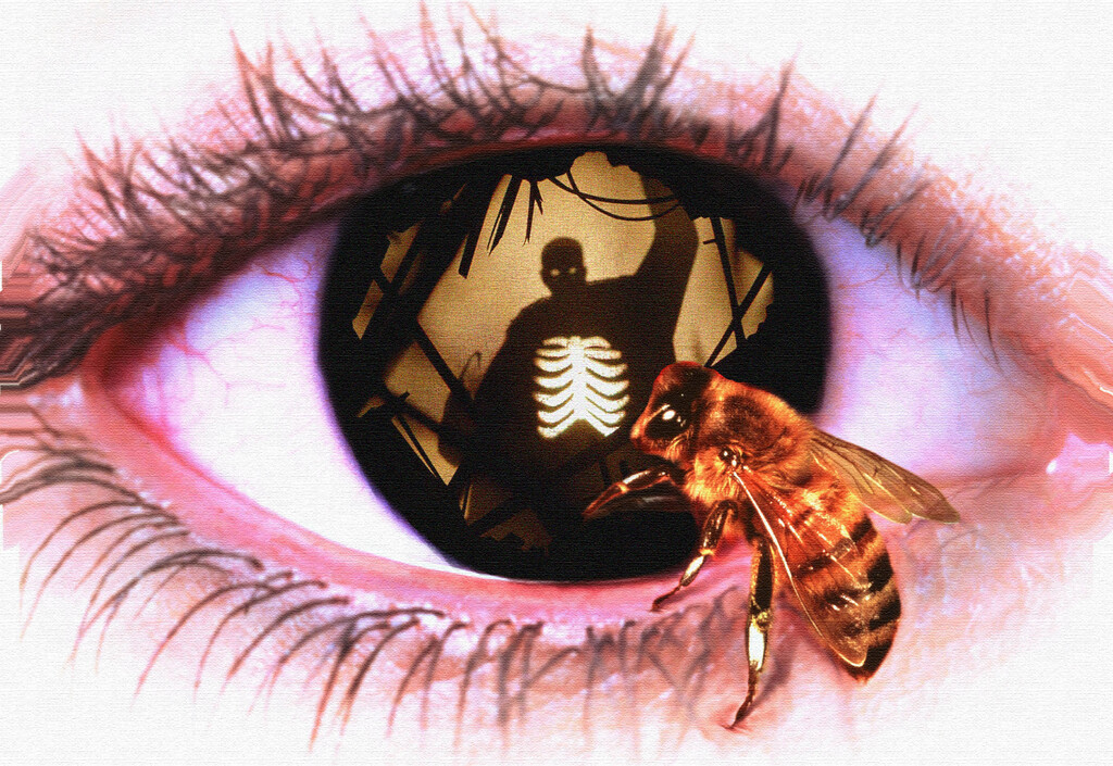 'Candyman': cómo la obra maestra de horror de Bernard Rose dialoga con la secuela de Nia DaCosta y su trasfondo racial