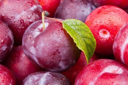 Respuesta a la adivinanza: Las ciruelas, un snack muy sano