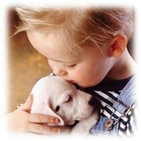 Las bacterias de las mascotas pueden provocar a los niños el Síndrome Urémico Hemolítico