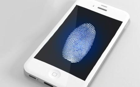 Algunas dudas sobre cómo se podría implementar el sensor biometrico para huella dactilar en el iPhone