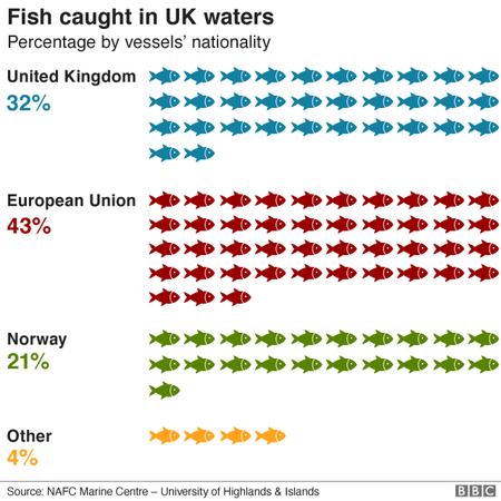 110714278 Fish Stats Nc