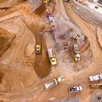 """La """"Operación Chinchilla"""" de los 100.000 kilos de oro: cómo 'desahuciar' 25 chinchillas en peligro de extinción sin que mueran en el intento"""