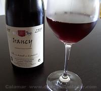 Domaine Verret Irancy 2005
