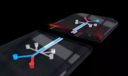 Un chip para acabar con la experimentación de medicamentos en animales, el último proyecto de DARPA