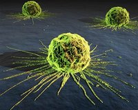 Las 10 enfermedades más frecuentes que la ciencia todavía no puede curar