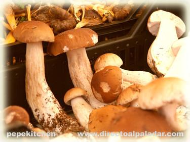 Los funghi porcini y otras setas en la cocina italiana