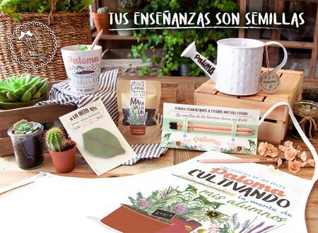 plantas-para-profesores