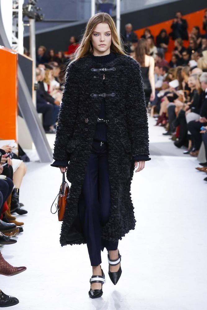 Foto de Louis Vuitton otoño-invierno 2015-2106 (27/47)