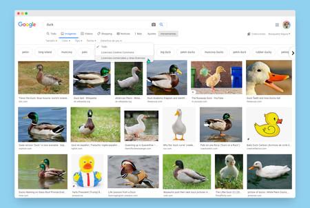 En Google Imágenes ahora es más fácil encontrar una imagen de uso libre o saber si tiene copyright