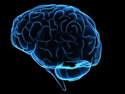 Nuestro cerebro está siempre drogado: ¿cómo sacarle partido? (I)
