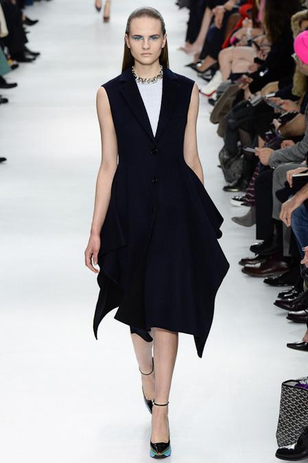 Foto de Christian Dior colección Otoño-Invierno 2014/2015 (23/47)