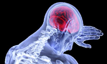 Brain 3168269 1920