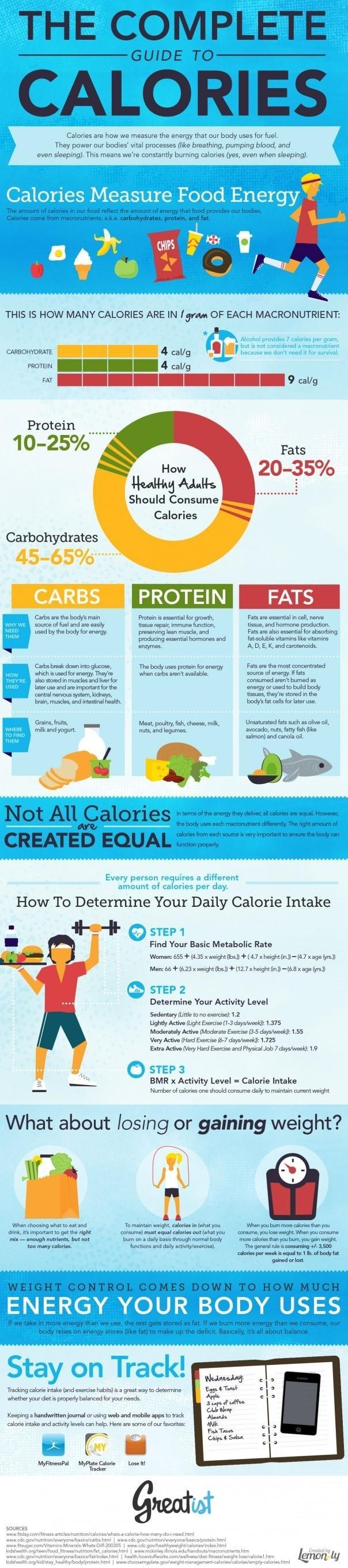 Foto de Una completa guía para conocer las calorías (1/1)
