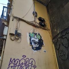 Foto 20 de 124 de la galería fotos-tomadas-con-el-xiaomi-mi-8-lite en Xataka Android
