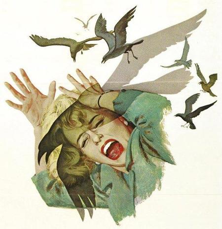the_birds-706885.jpg