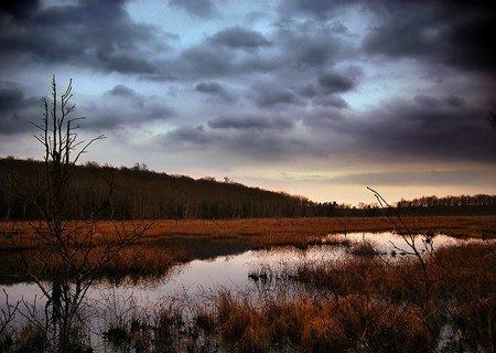 El pantano de la mediocridad