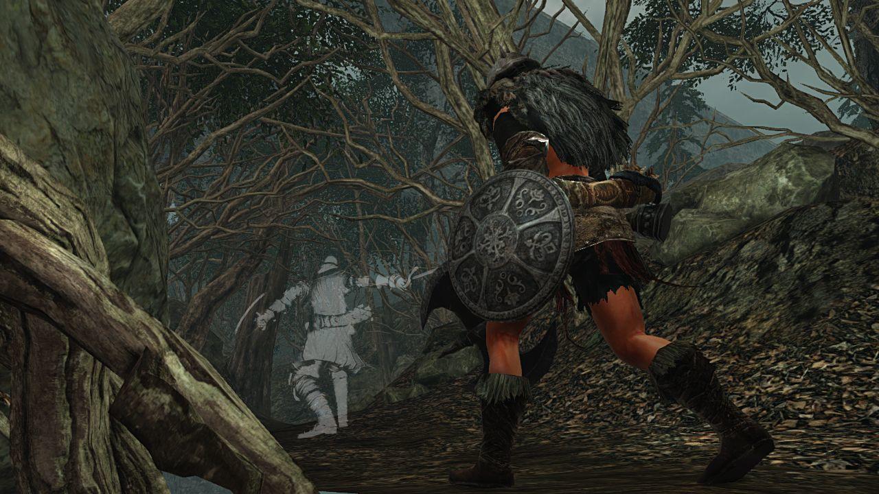 Foto de 170114 - Dark Souls II (11/24)