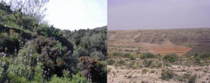 Nuevo sistema para alertar sobre desertización creado por el CSIC
