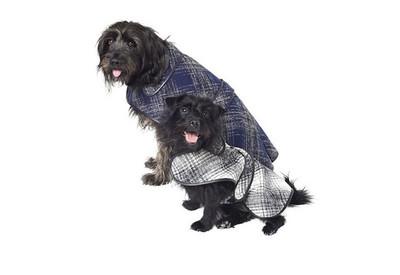 Oscar de la Renta se encarga de que tu mascota no pase frío este invierno
