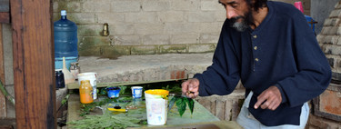 Transforman el bagazo de tequila en papel para ayudar al medio ambiente