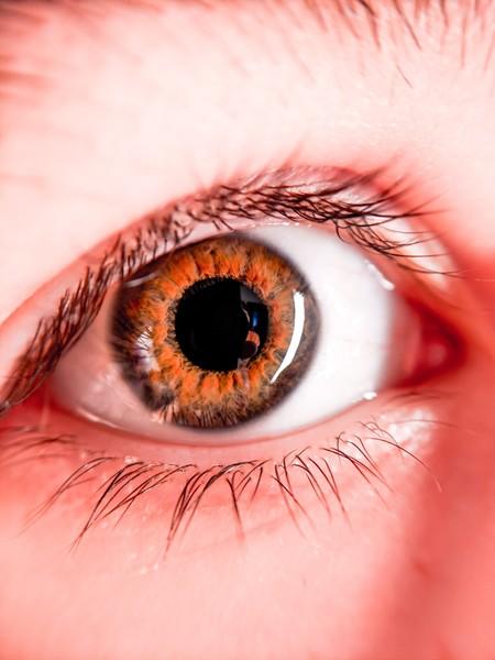 Beautiful Big Eyes Close Up 2729528