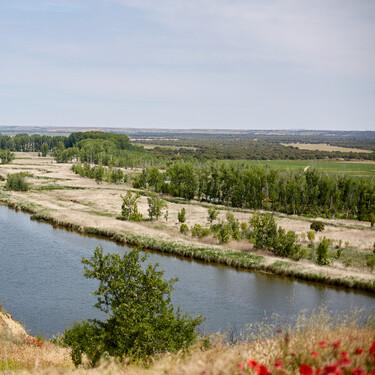 Bodegas Barcolobo: un vino producido entre corzos, en una reserva natural a orillas del Duero que bien merece una visita