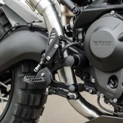 Foto 8 de 19 de la galería yamaha-xsr900-yard-built-monkeebeast en Motorpasion Moto
