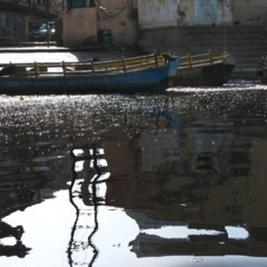Foto 8 de 24 de la galería caminos-de-la-india-de-vuelta-a-mathura en Diario del Viajero