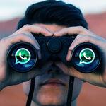 """WhatsApp permitirá elegir a qué contactos ocultar la """"última vez"""", pero el estado más problemático seguirá sin poder ocultarse"""