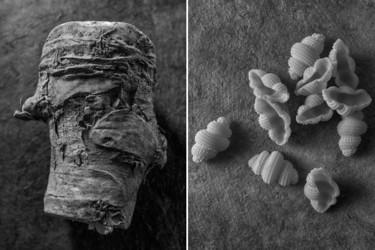 Lamotte nos anima a redescubrir la belleza de los alimentos con sus fotos en blanco y negro
