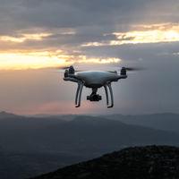 Los granjeros de Nueva Zelanda están utilizando drones que ladran para pastorear sus ovejas