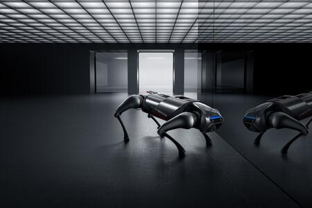 Cyberdog 01