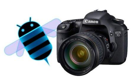 Canon 7D Honeycomb