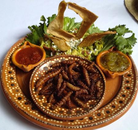 Insectos Comestibles Mexico 3