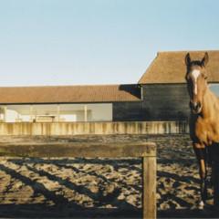 casas-que-inspiran-una-granja-en-blanco