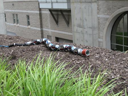 Estas serpientes robot acudieron tras el terremoto de México para aprender a localizar víctimas