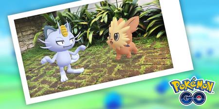 Pokémon GO - Compañeros