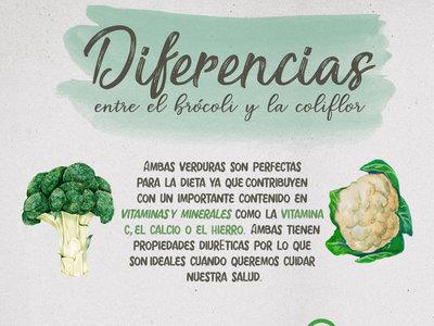 Las diferencias entre el brócoli y la coliflor. Infografía