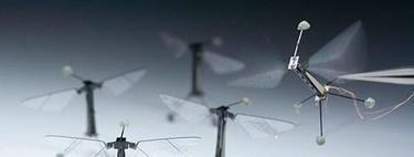 RoboBees, en busca de los robots polinizadores