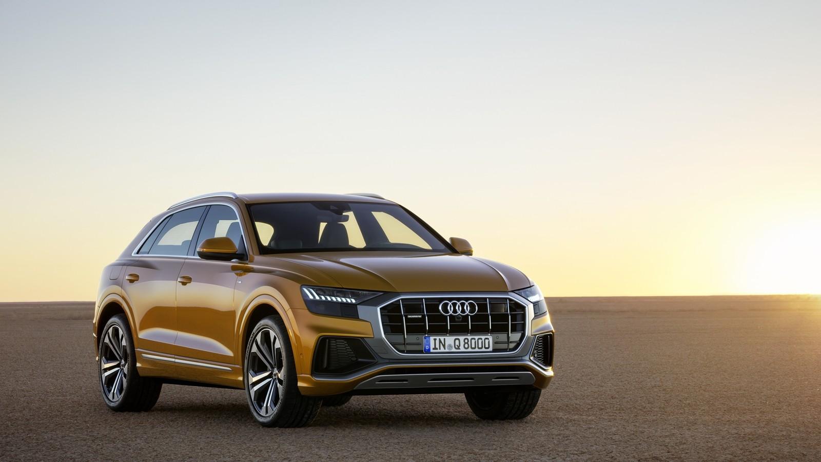 Foto de Audi Q8 2019 (21/33)