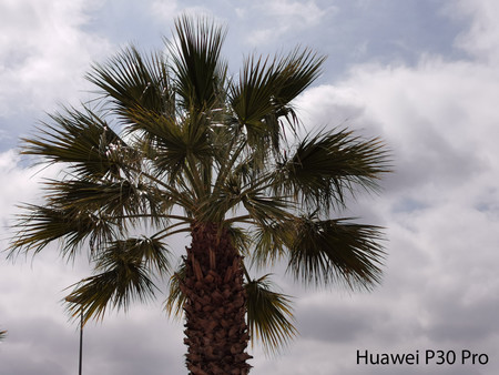 Huawei P30 Pro Zoom 01