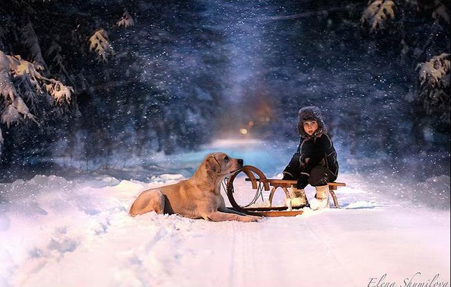 Foto de Elena Shumilova (12/15)